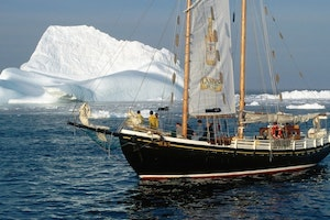 Northland Discovery Iceberg & Whale Tours