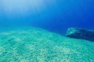 Baina Beach Underwater Sea Walk