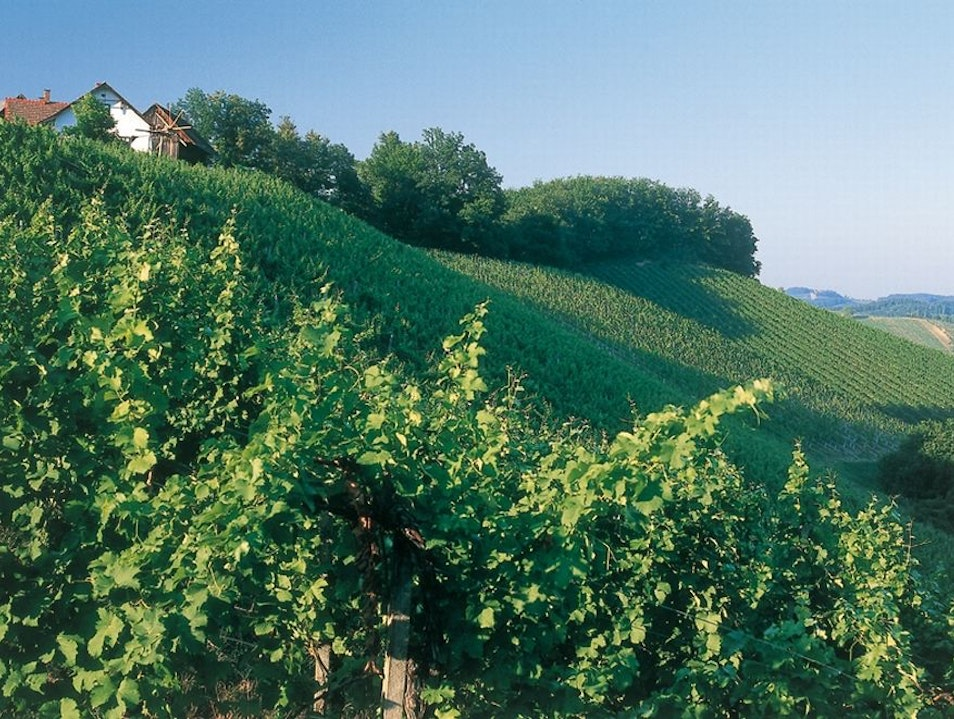 Stay in the Styrian Vineyards