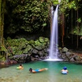 Emerald Pool   Dominica
