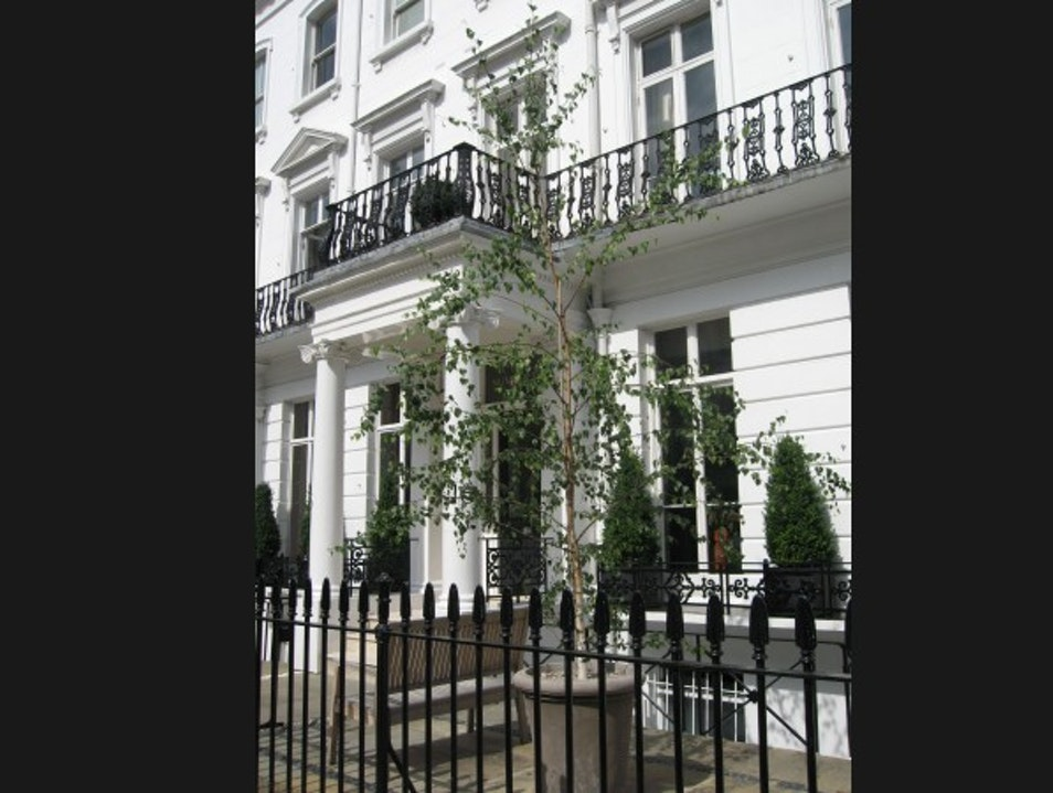 Fun, fresh townhouse  London  United Kingdom