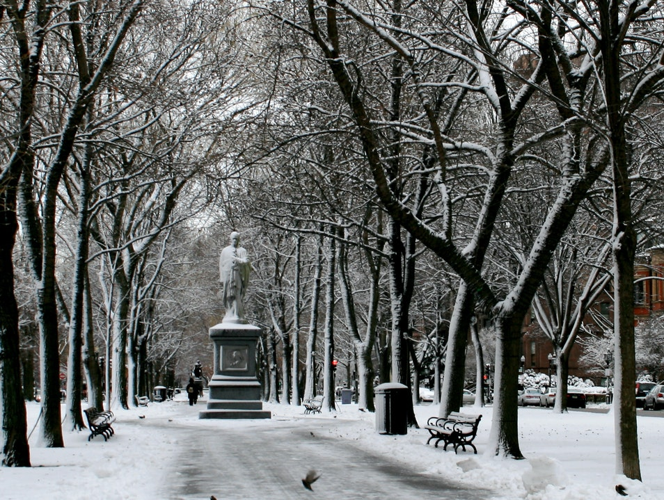 The Commonwealth Avenue Mall in Winter