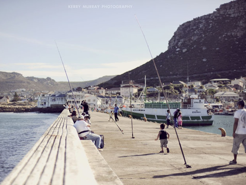 Fresh fish from Kalk Bay harbour