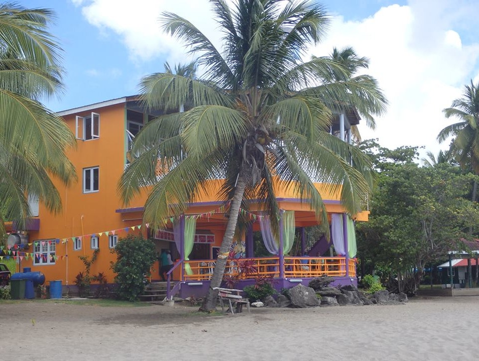 Purple Turtle Beach Club   Dominica