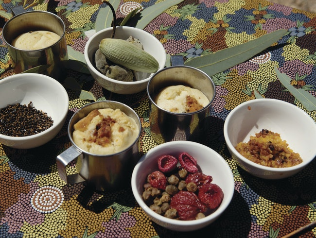 A Taste of Bush Tucker Around Alice Springs