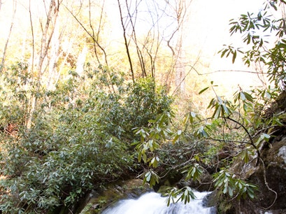 Great Smoky Mountains National Park Gatlinburg Tennessee United States