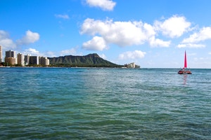 What to Do in Honolulu