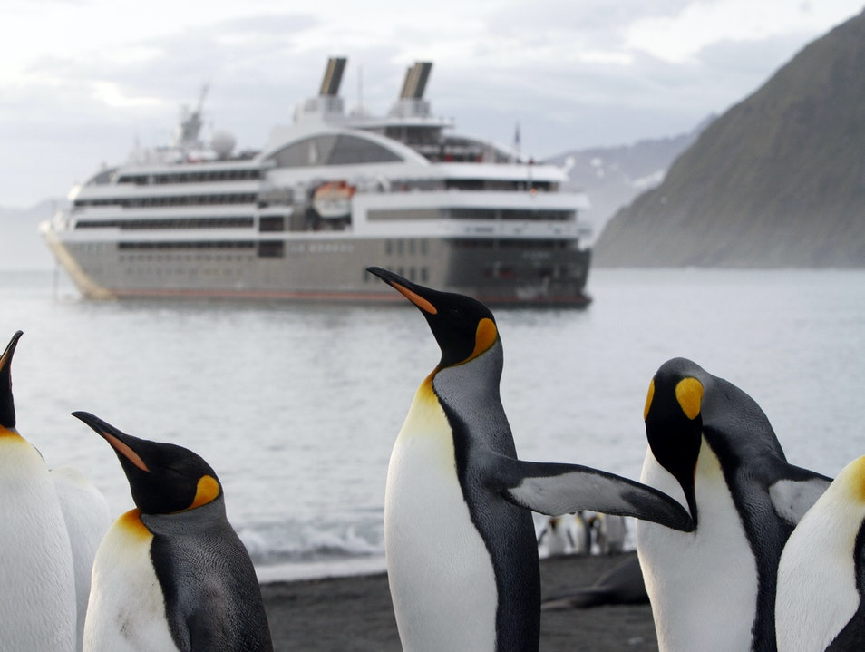 Arctic Penguin Education Aboard the Le Boreal   Antarctica