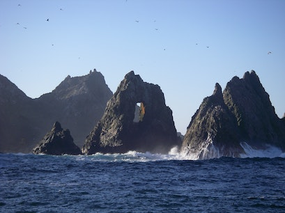 Farallon Islands San Francisco California United States