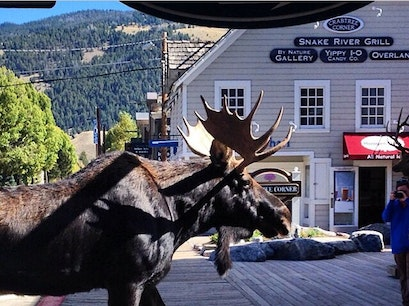 Jackson Wyoming town square Jackson Wyoming United States