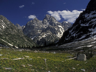 Cascade Canyon, Grand Teton National Park, WY Moose Wyoming United States