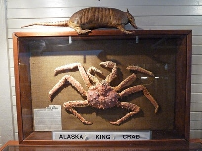 port gamble museum of shells and natural history Poulsbo Washington United States