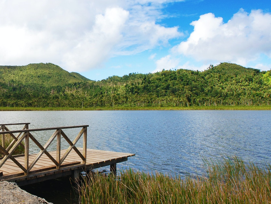 Grand Etang National Park Saint Andrew  Grenada