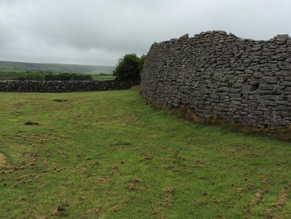 Ireland's Past, Preserved. Plus sheepdogs!