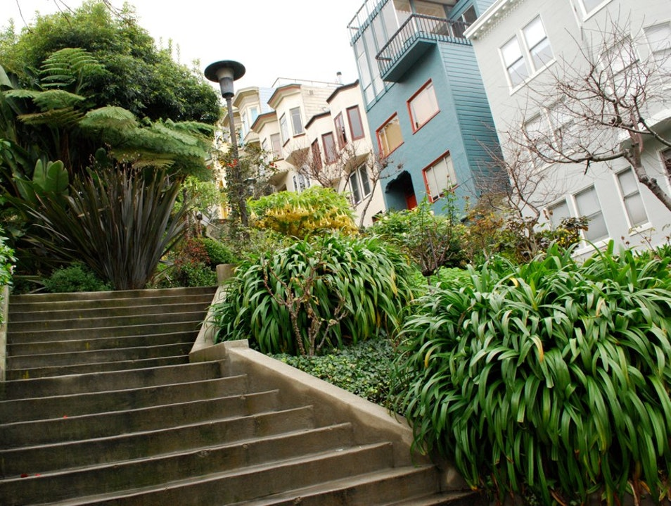Climb the Filbert Steps for Views and Parrots  San Francisco California United States