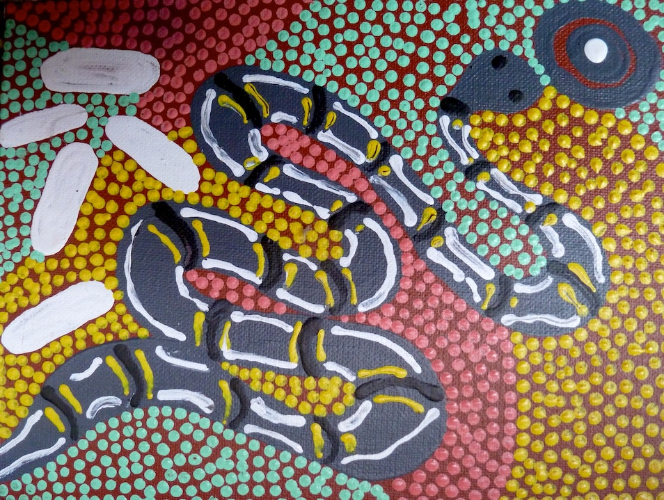 Ethically Purchasing Aboriginal Art in Central Australia Alice Springs  Australia