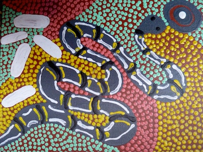 Desart (Association of Central Australian Aboriginal Art and Craft Centres) Alice Springs  Australia