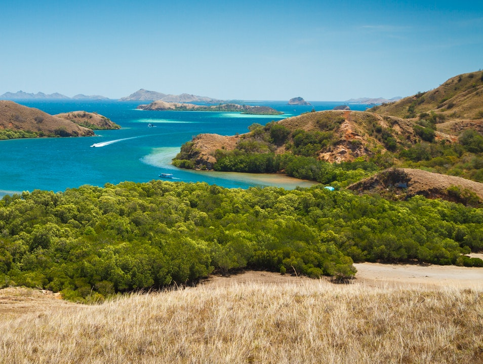 Komodo National Park  Komodo  Indonesia