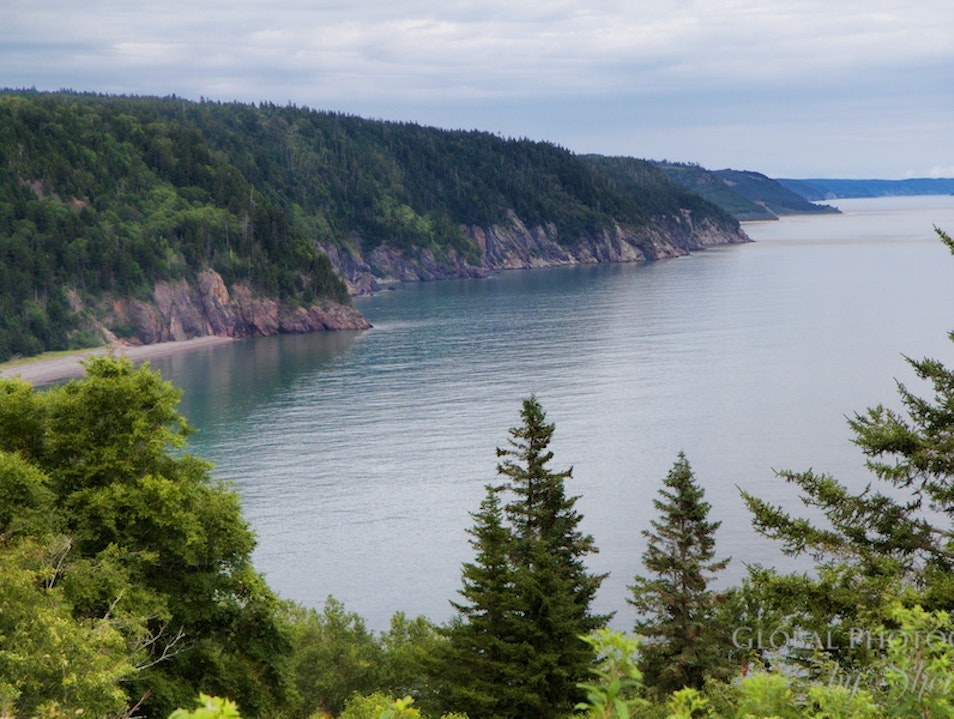 Fundy National Park Alma  Canada