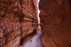 Wall Street Bryce Canyon