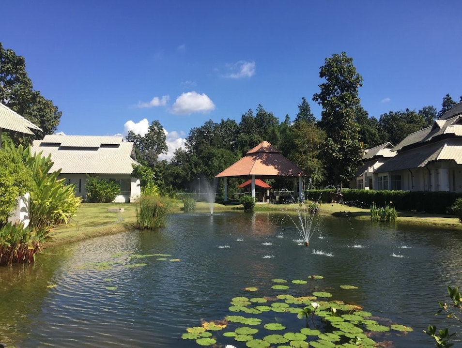 What does Health and Wellness have to do with Chiang Mai?  Chiang Mai  Thailand