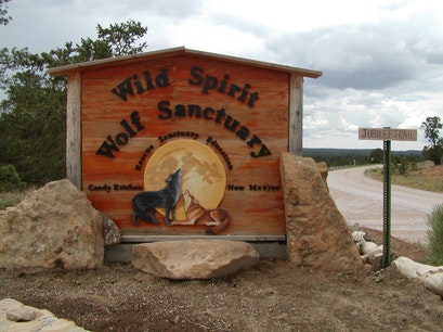 Wild Spirit Wolf Sanctuary Ramah New Mexico United States