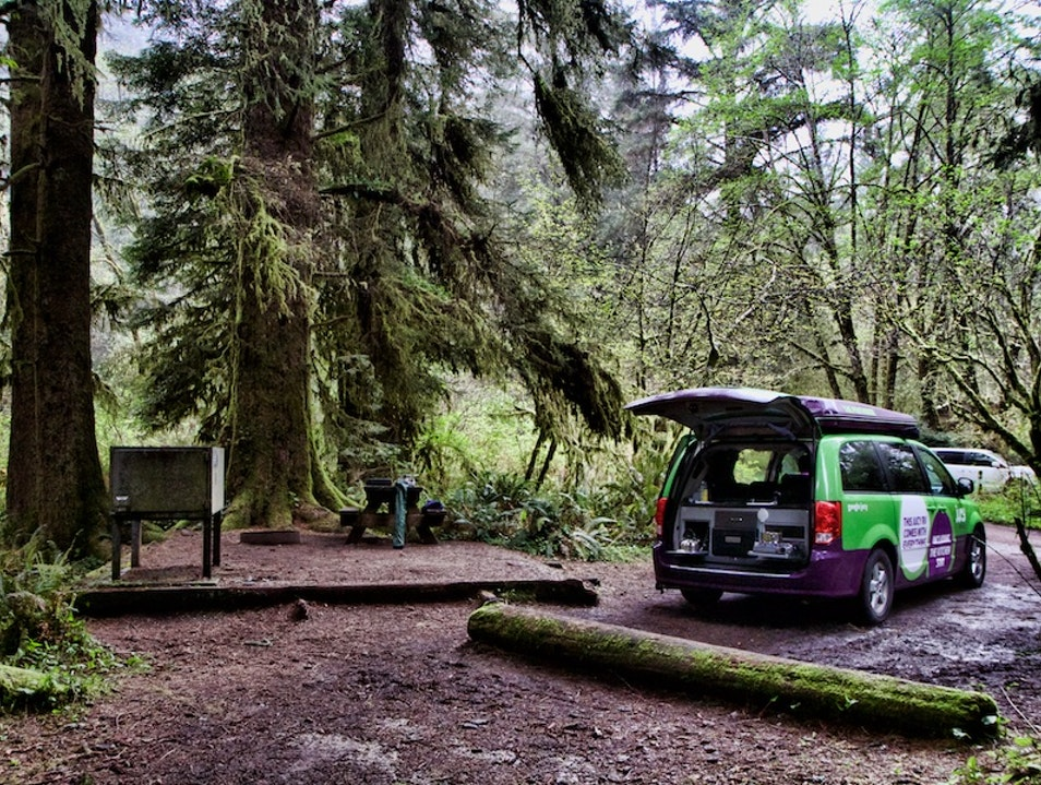 Sleep Among the Giants Camping in Redwoods National Park