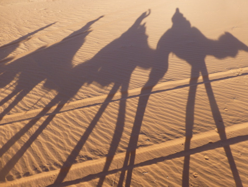 Riding camels in Wadi Rum!