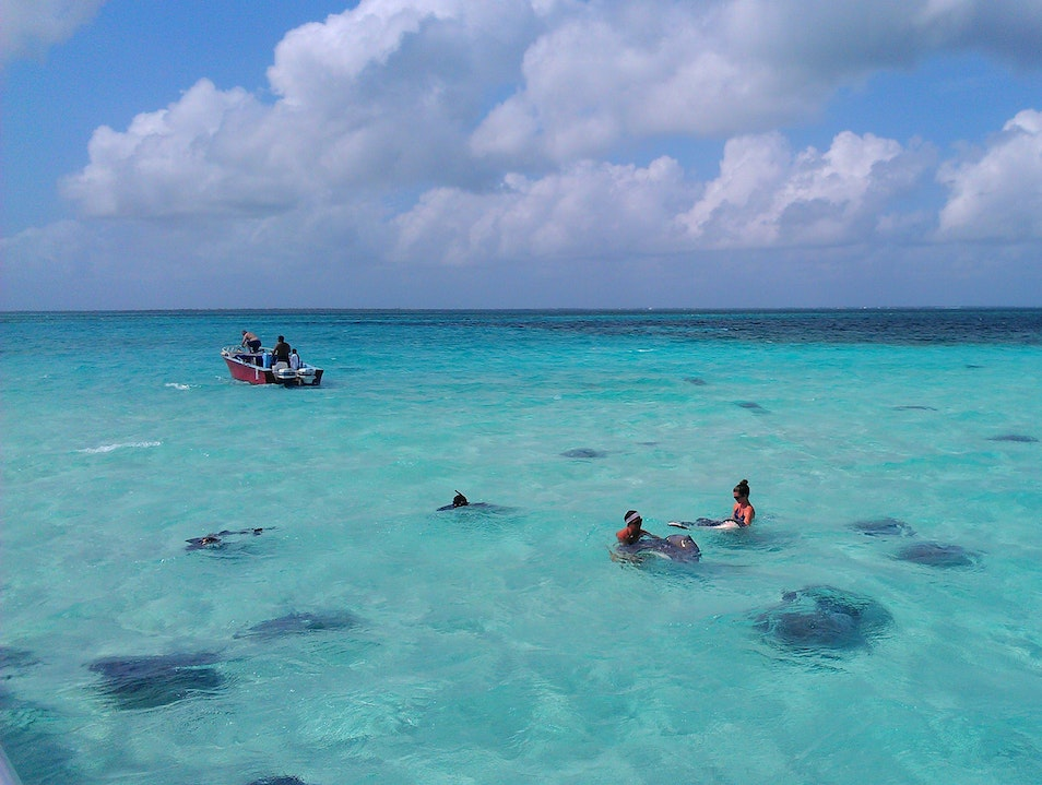 Visit to Stingray City George Town  Cayman Islands
