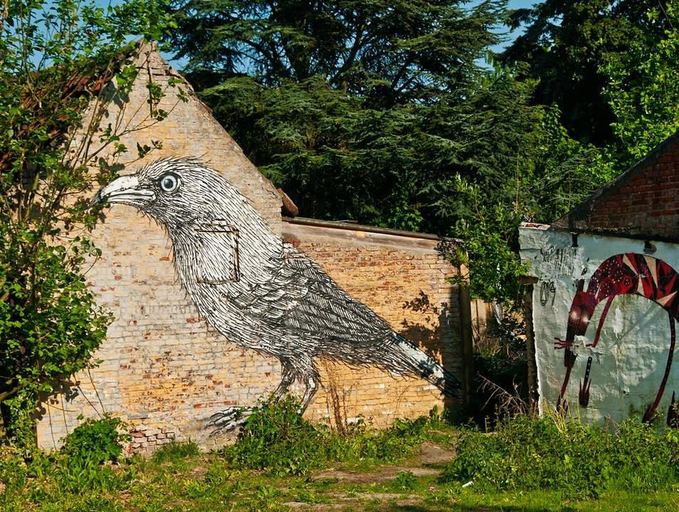 Graffiti Art in a Vanishing Belgian Town