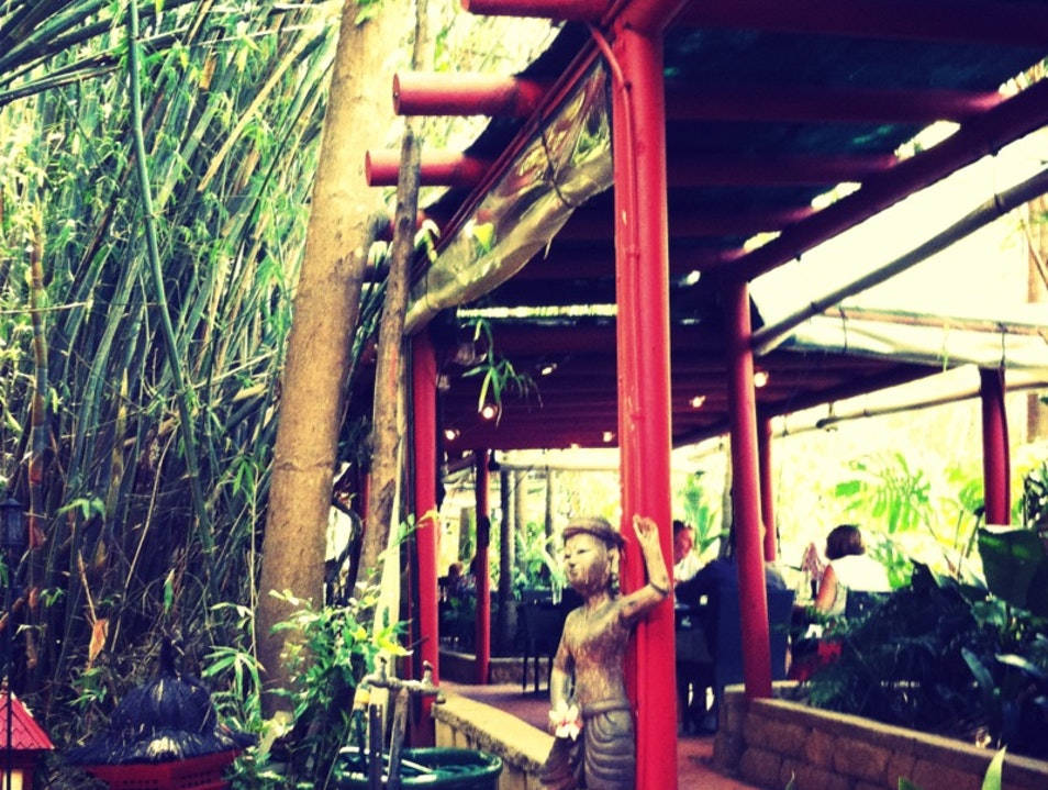 Teleport to Tropical Asia for Lunch or Dinner