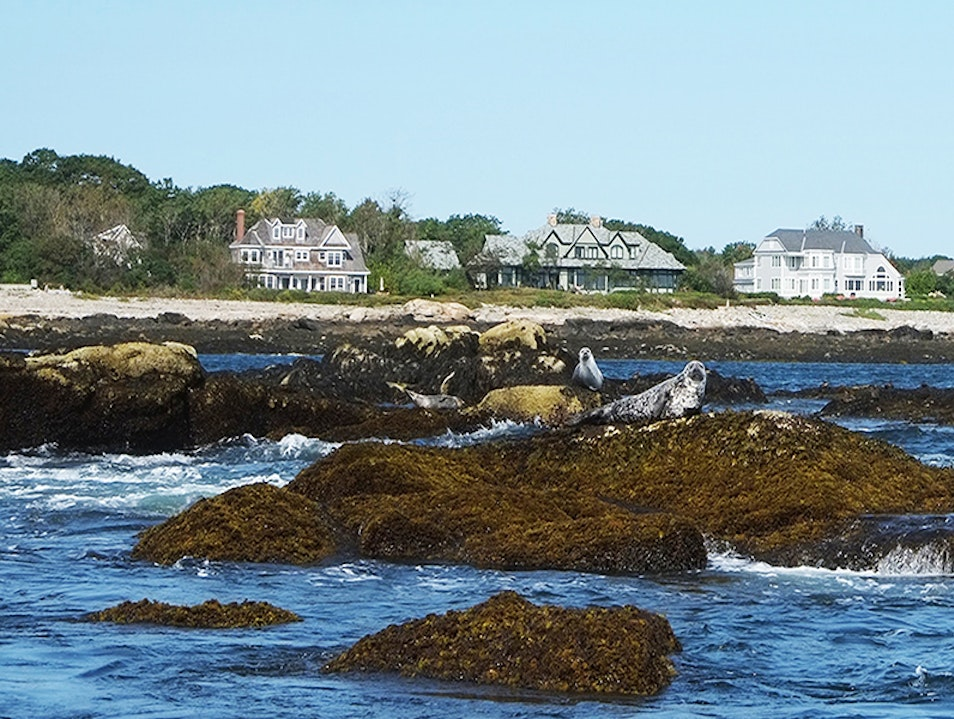 Seal Watching  Kennebunkport Maine United States