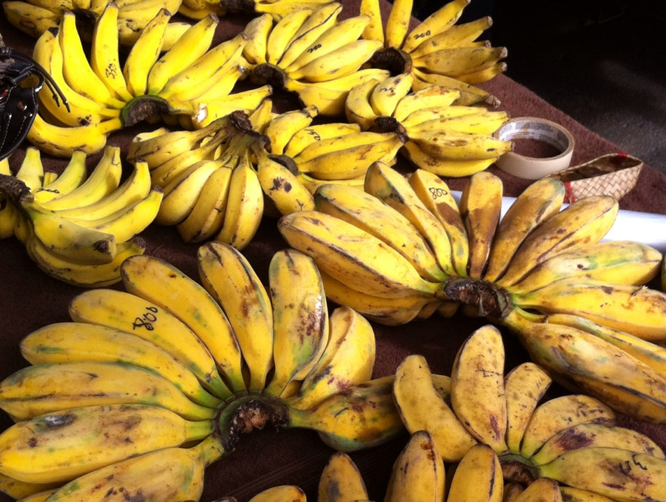 Go Bananas In Kauai Lihu'e Hawaii United States