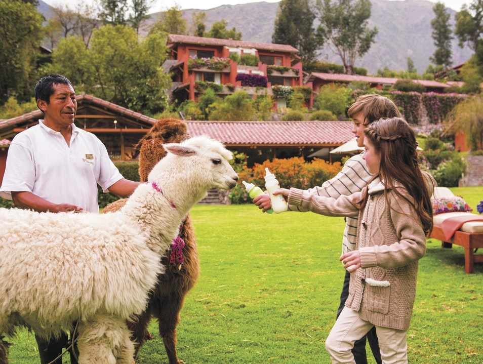 Do Feed the Animals Urubamba  Peru