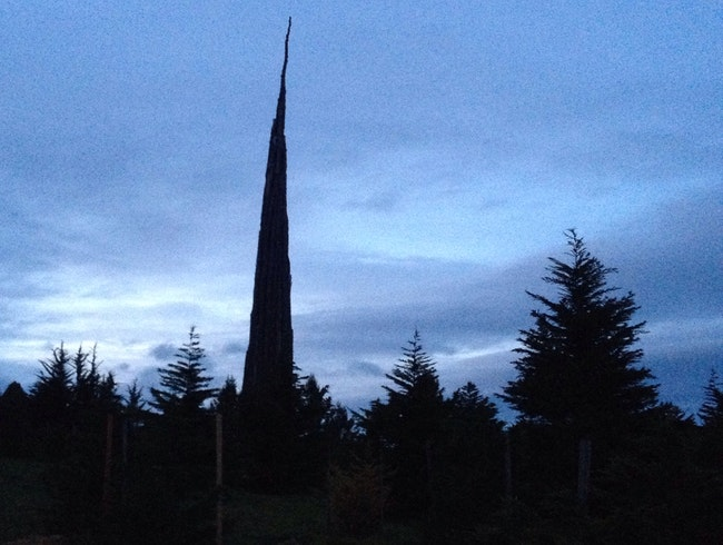 Andy Goldsworthy's Spire at the Presidio