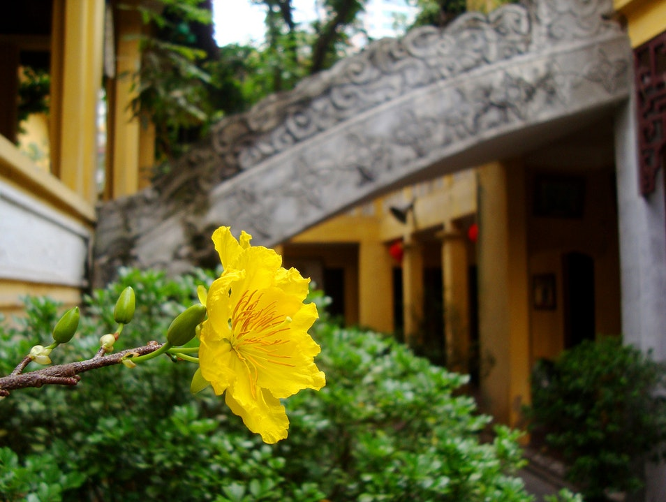 Discover the Heart of Buddhism in Hanoi