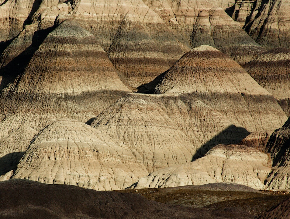 Travel Back in Time Petrified Forest National Park Arizona United States