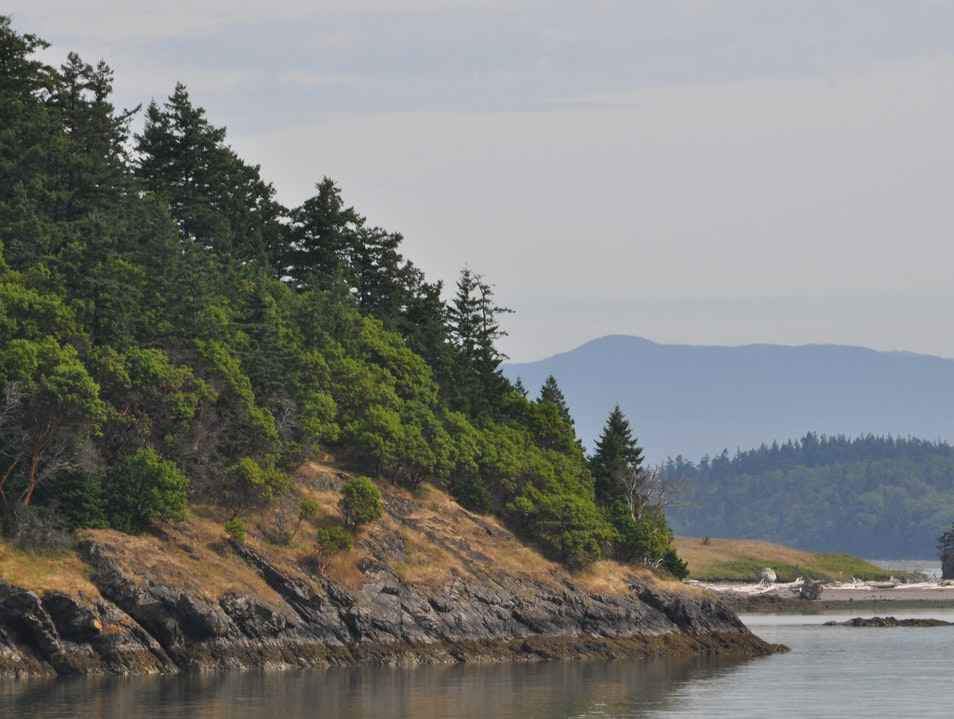 Seattle Day Trip: Cruising the San Juan Islands