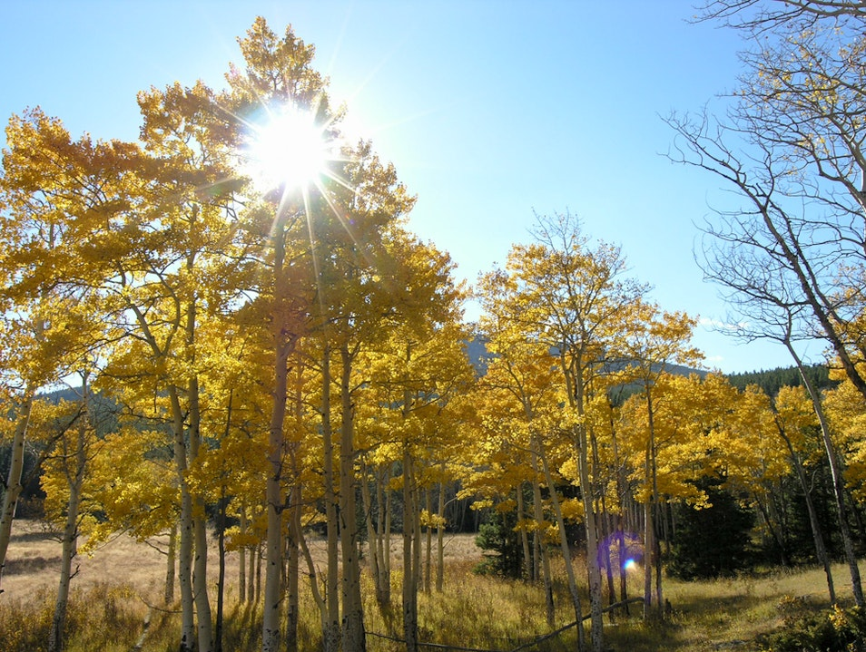 Hiking Rocky Mountain National Park's Odessa–Fern Lake Trail in Late September Estes Park Colorado United States