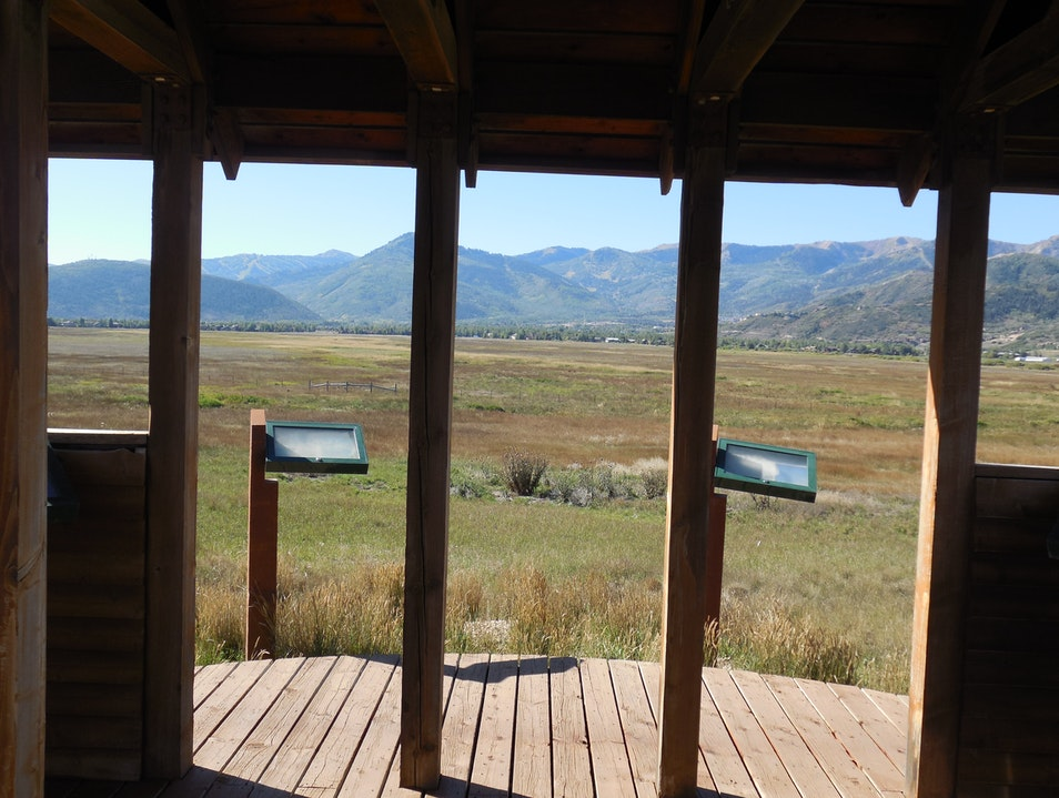 Commune with Nature at the Swaner Preserve Park City Utah United States