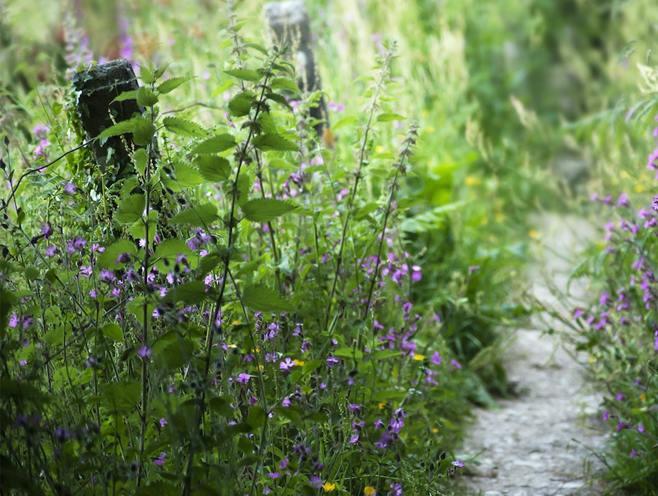 Hildurs Farm and Herb Garden Brønnøy  Norway