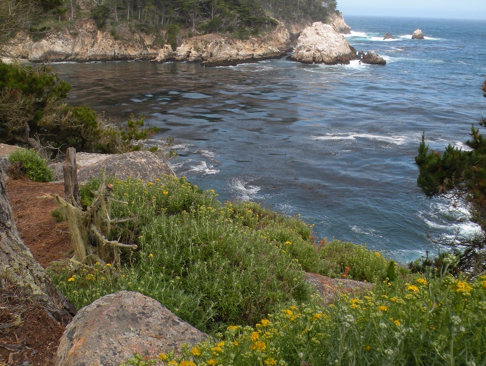 Stunning views just a short drive south of Carmel Carmel California United States