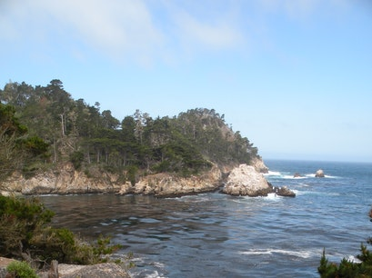 Point Lobos State Reserve Carmel California United States