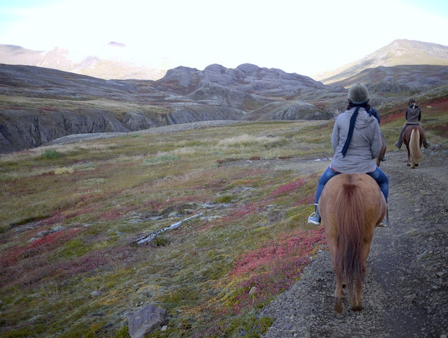 On an Icelandic Horse