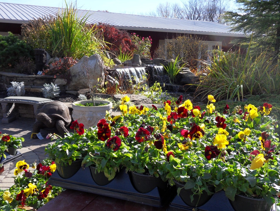 Eric's Nursery and Garden Center Mount Laurel New Jersey United States