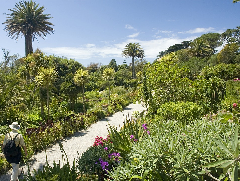 Tresco Abbey Garden Tresco  United Kingdom