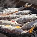 Anchor Bay Fish Fry Governor's Harbour  The Bahamas