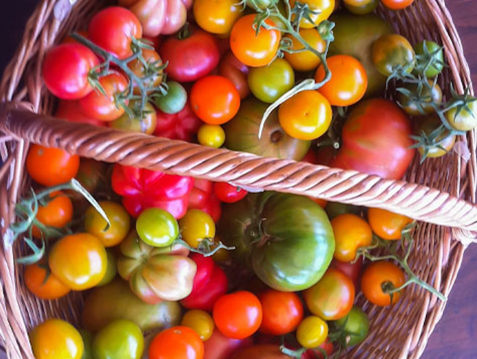 Cabo's Best Cooking School Is on a Farm San José del Cabo  Mexico