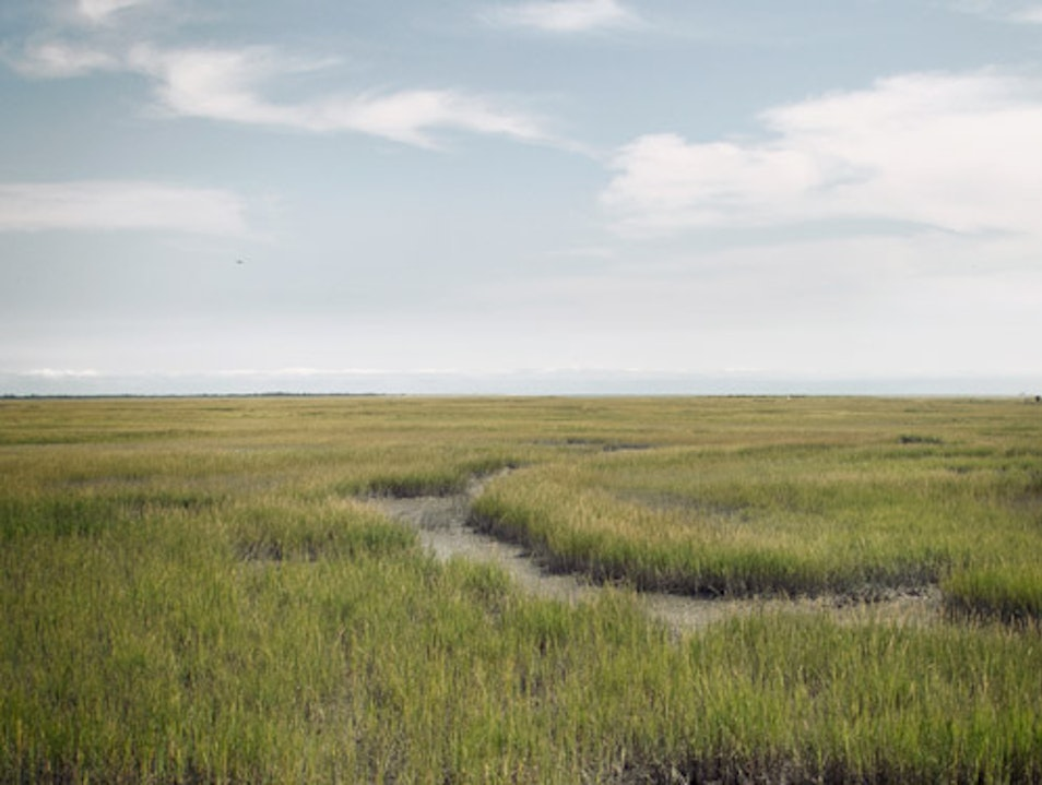 Virginia Salt Marsh Cape Charles Virginia United States