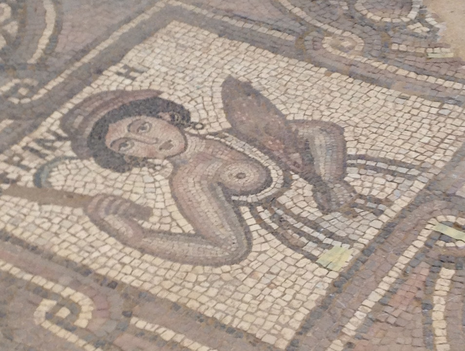 Mosaic from Byzantine Church Petra Ma'an  Jordan
